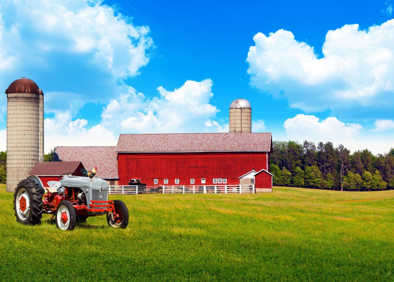 Springfield, Albany, OR. Farm & Ranch Insurance